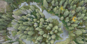 Riparian Area Mapping